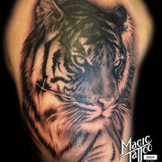 Tigris Tetoválás Budapesst